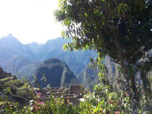 250615Machu Picchu (49)